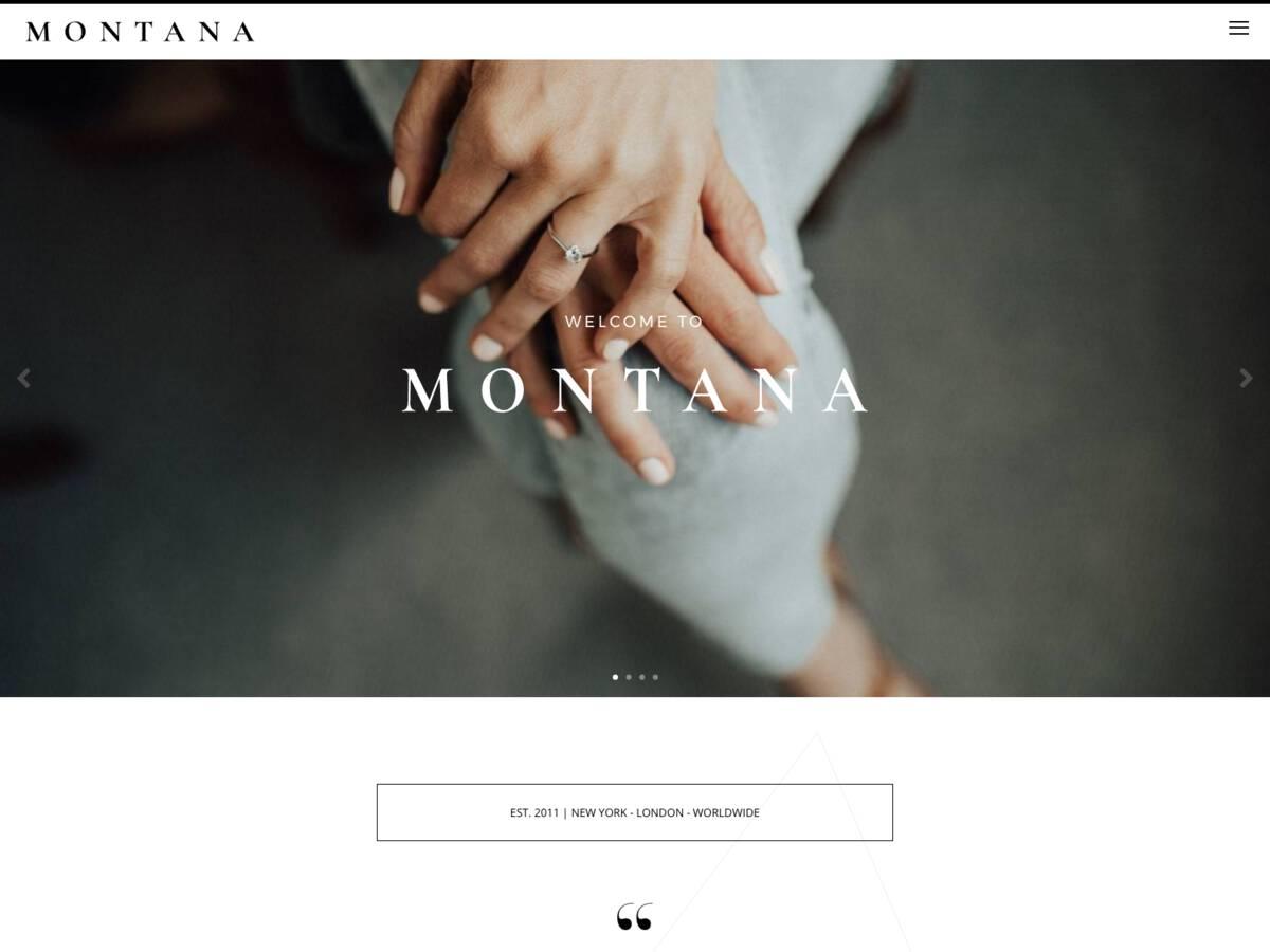 MONTANA screenshot