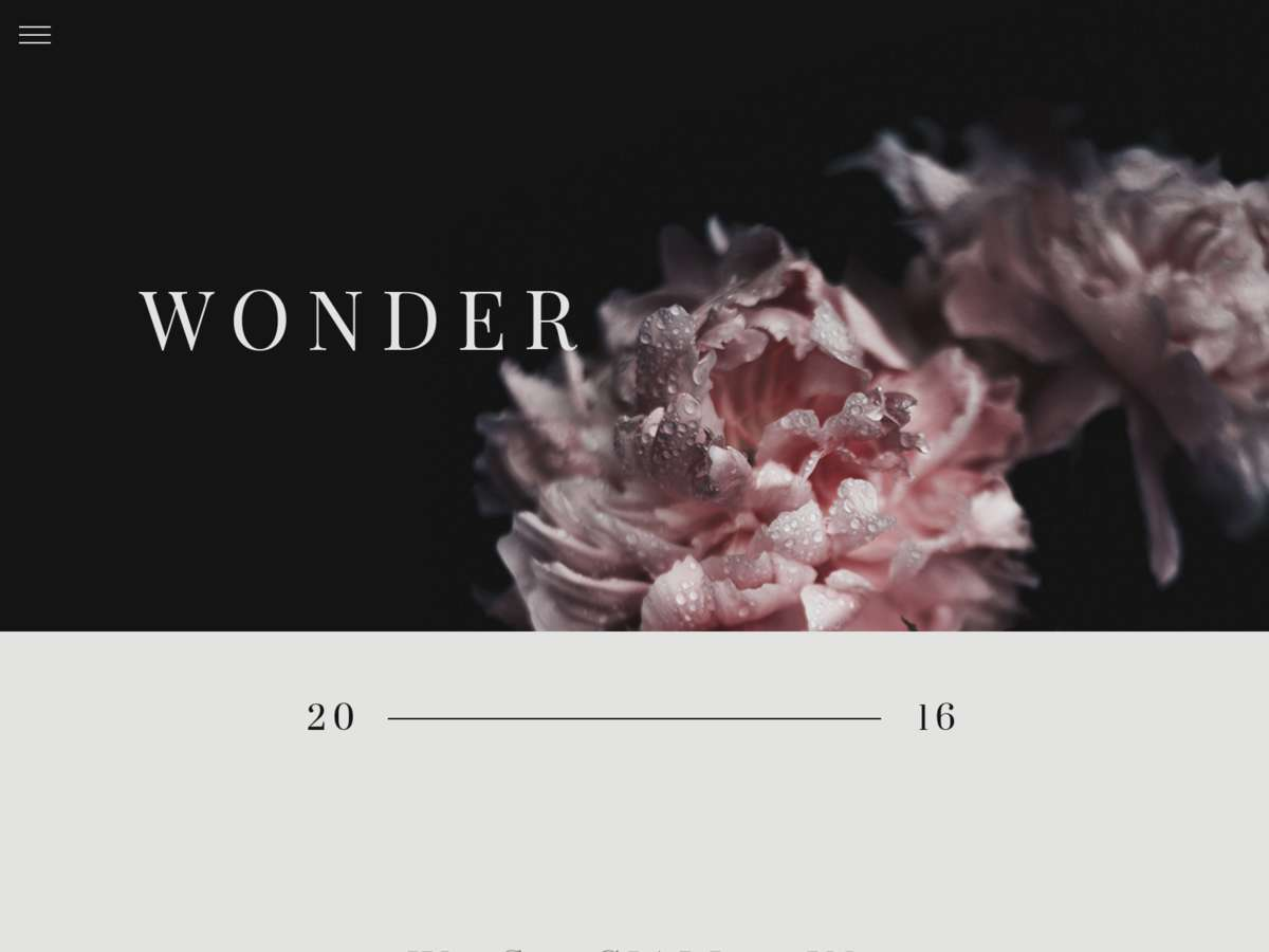 Wonder screenshot
